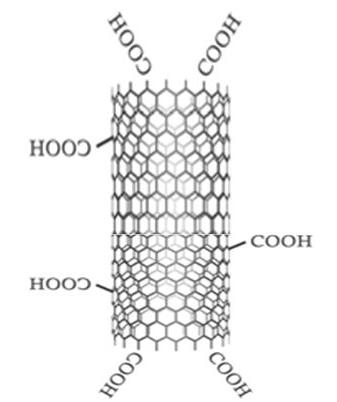 Functionalized Multiwalled Carbon Nanotubes